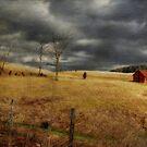 Winter Begins by Lois  Bryan