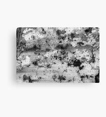 Macro Abstract Canvas Print
