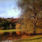 Autumn Harmony by naturelover