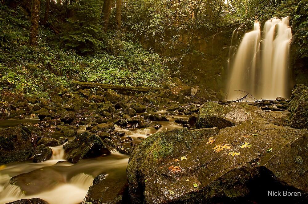Majestic Falls by Nick Boren