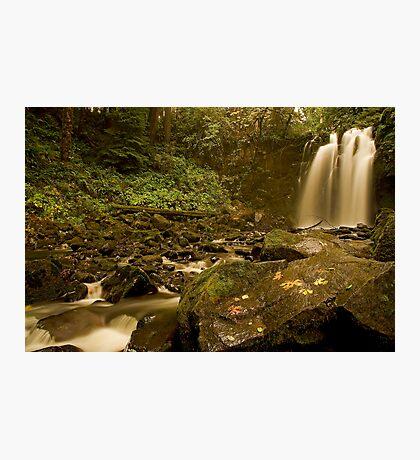 Majestic Falls Photographic Print