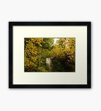 Autumn At Upper Terrace Framed Print