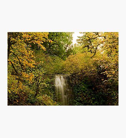 Autumn At Upper Terrace Photographic Print