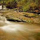 Lower McDowell Creek Falls by Nick Boren