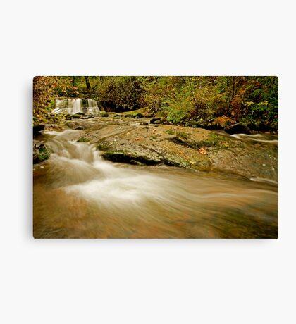 Lower McDowell Creek Falls Canvas Print