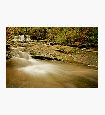 Lower McDowell Creek Falls Photographic Print