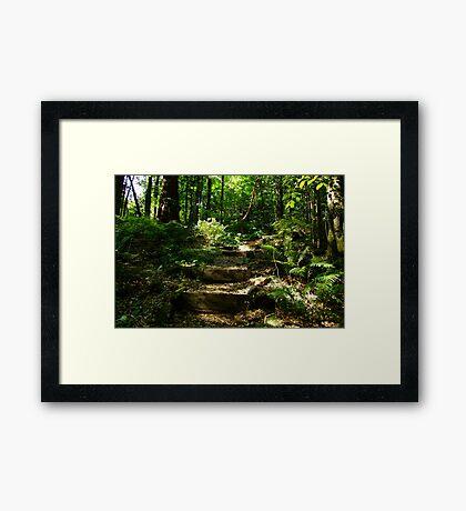 Merry Garth, Mt Wilson Framed Print