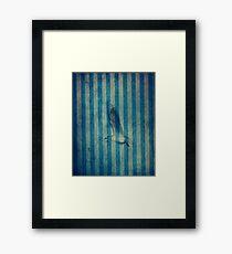 seagull in cyan Framed Print