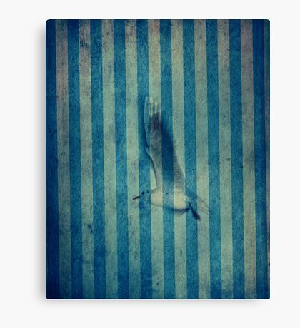 seagull in cyan Canvas Print