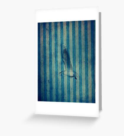 seagull in cyan Greeting Card