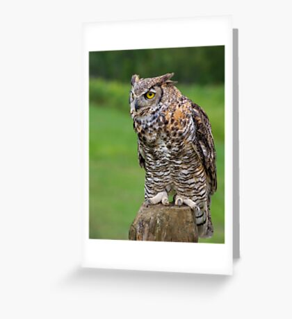 Ready to go! Greeting Card