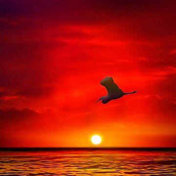 Sunset 11 by sirgulamhusain