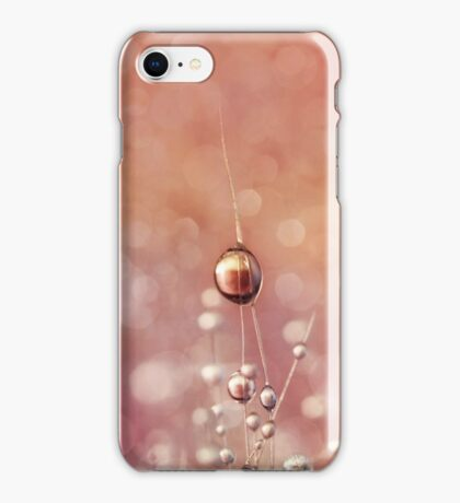 Sunset & Snowflake Cactus Drops iPhone Case/Skin