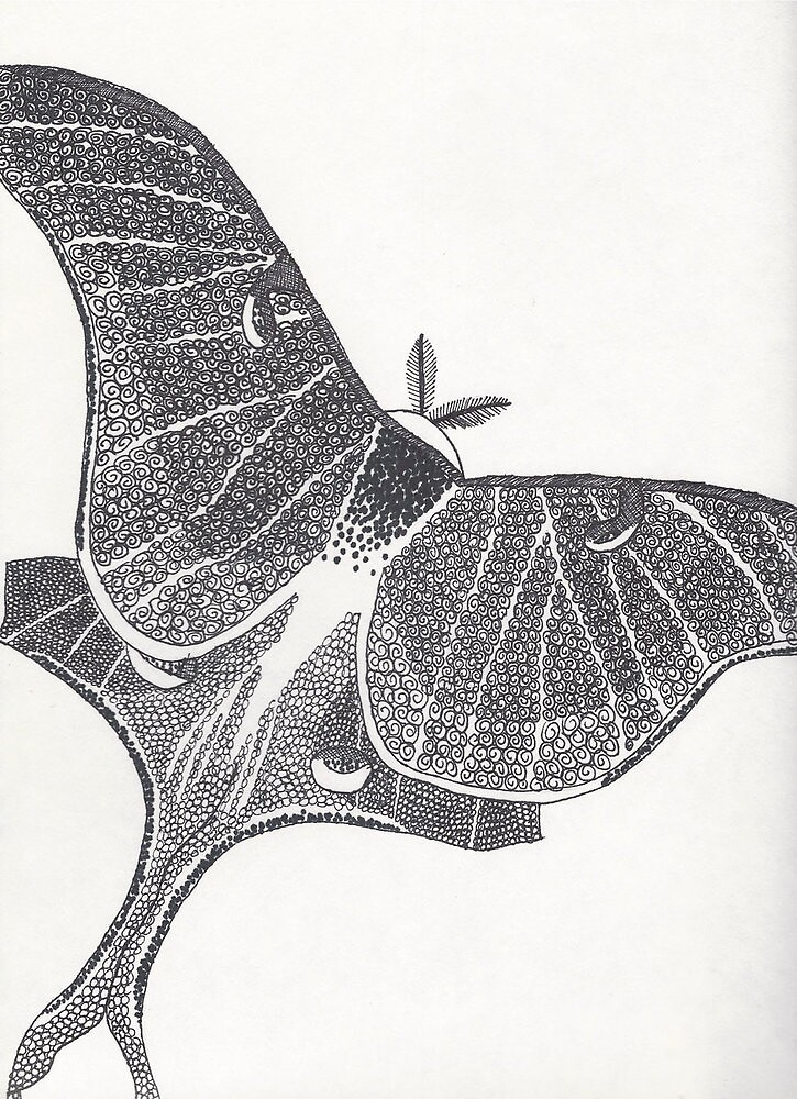Greyscale Luna Moth by PennThePenguin