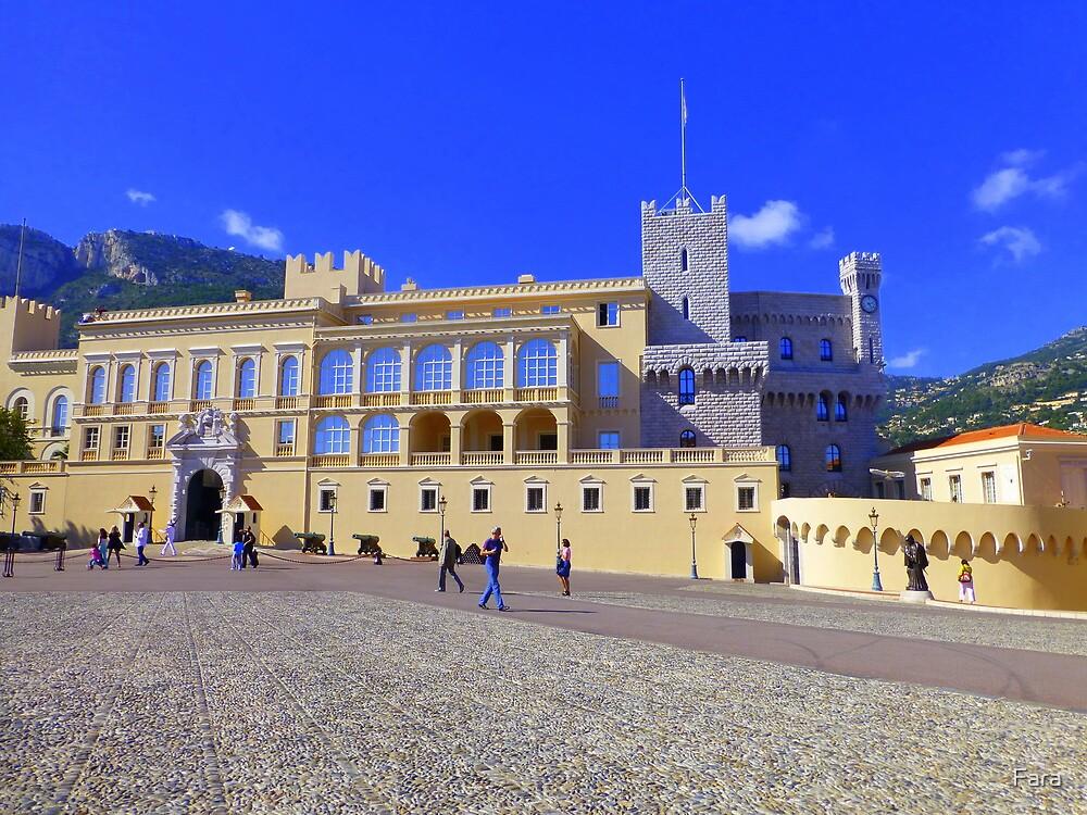 The Prince's Palace Of Monaco by Fara