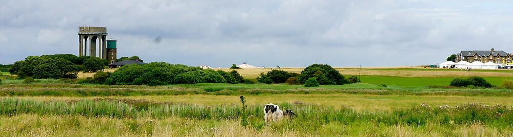 Panoramic Landscape by stelhope