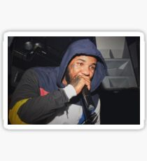 The Game performing live in Irvine CA - 2015 Sticker