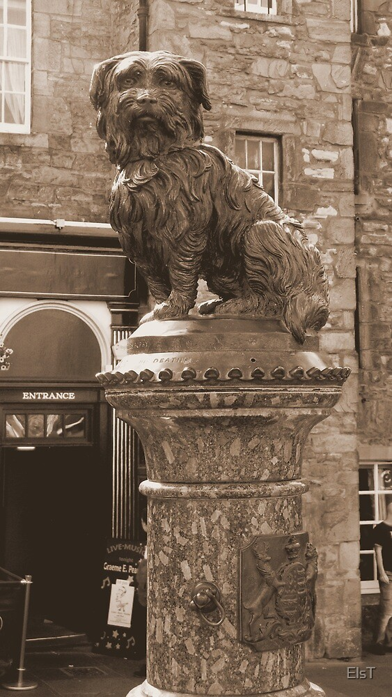 Grey Friars Bobby by ElsT
