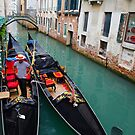 Venice Canal by David Galson