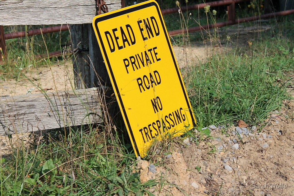 Dead End by Sarah Wolfe