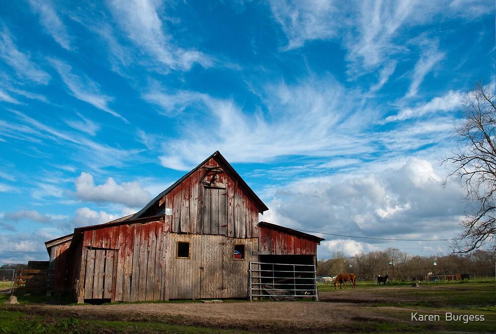 Old Barn by Karen  Burgess