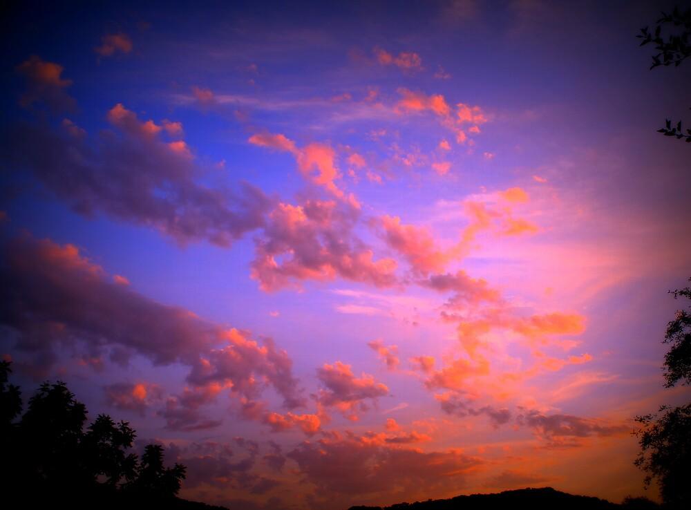 Cotton Candy Sky by Carly  Stine