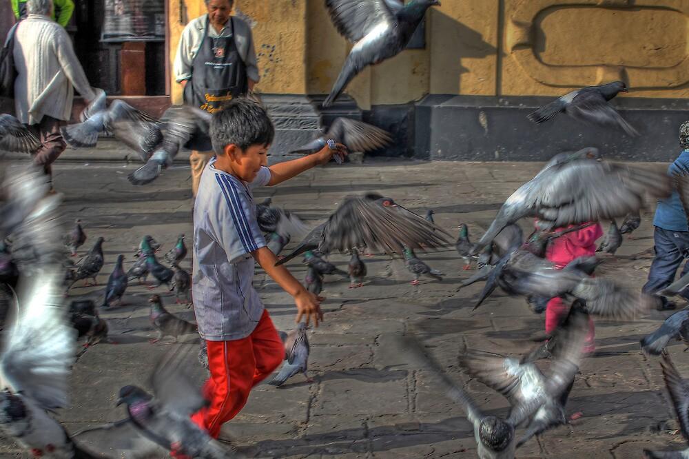 Pigeon Play - Iglesia de San Francisco - Lima,Peru by Edith Reynolds