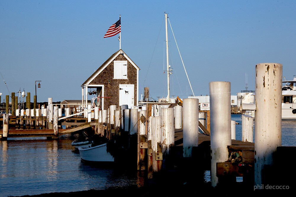 Black Dog Sailing Dock by phil decocco