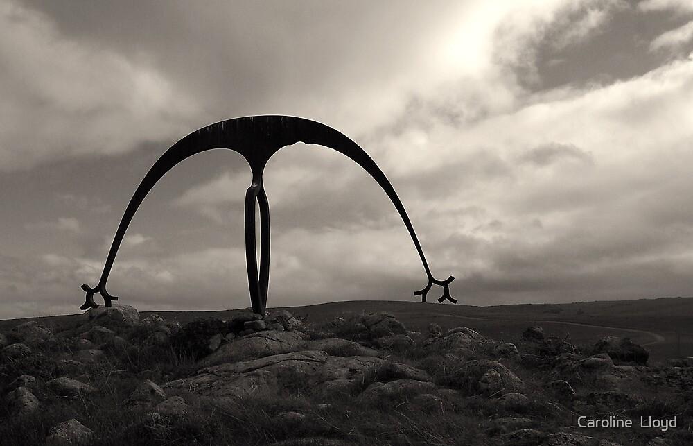 Sculptural Curve by Caroline  Lloyd