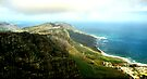 Looking South From Table Mountain by Carole-Anne