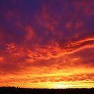 Sunset in the Big City  by Alberto  DeJesus