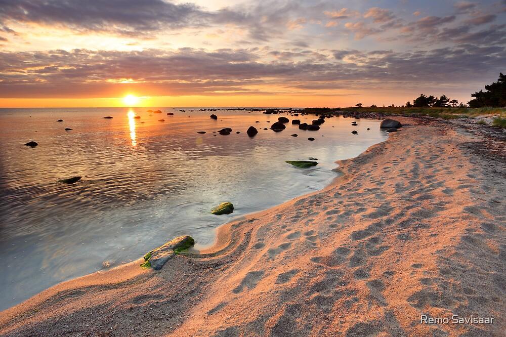Walk on the beach  by Remo Savisaar