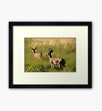 I'll Stay With You My Deer Framed Print