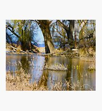 Willow Creek Reservoir Photographic Print