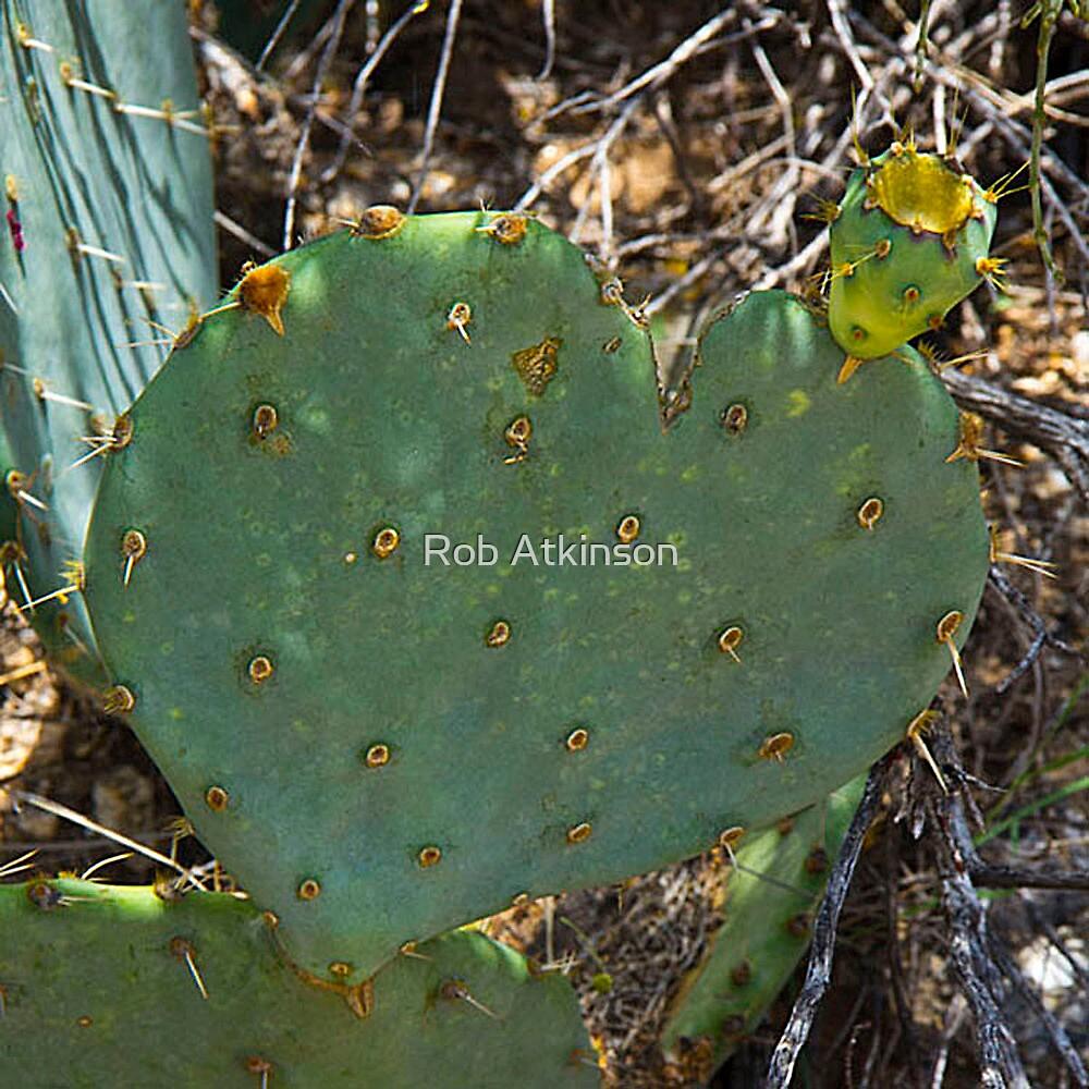 Love Like Cactus by Rob Atkinson
