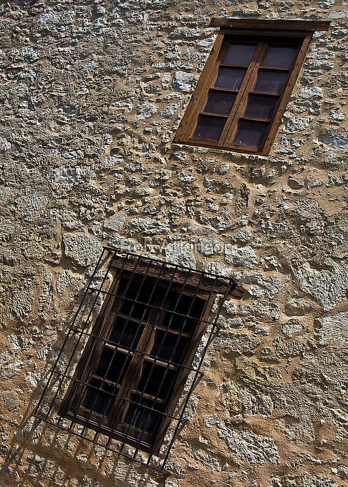 Windows at the Alamo by Rob Atkinson