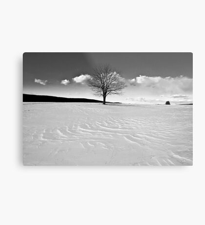 Winter is Comin' Metal Print