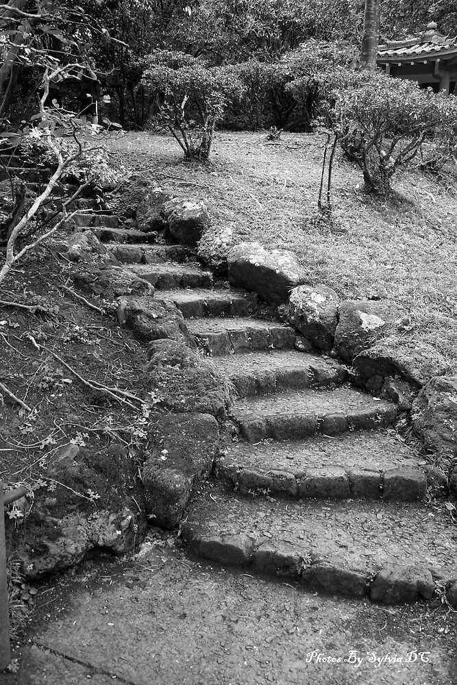 Old steps by sdcanava