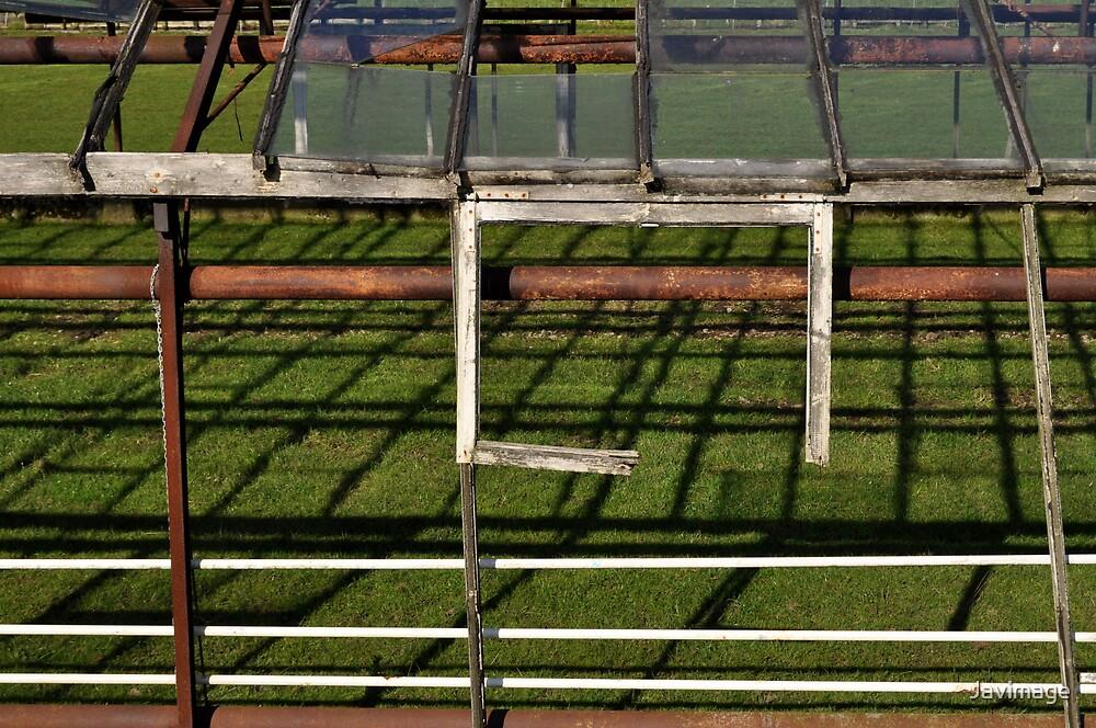 Open window by Javimage