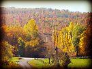 An Autumn View by FrankieCat