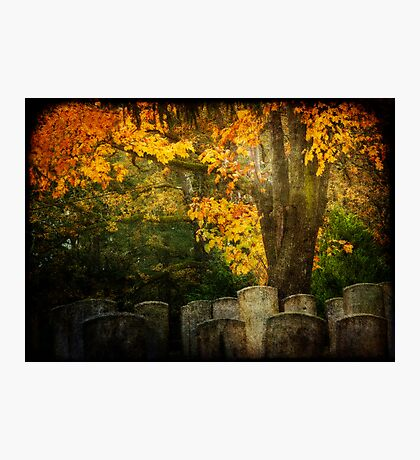 Autumn in the Cemetery Photographic Print