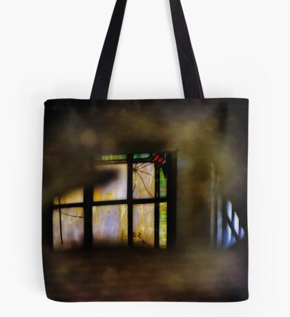 Reflecting the Past Tote Bag