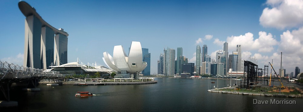 Singapore Panorama by Dave Morrison