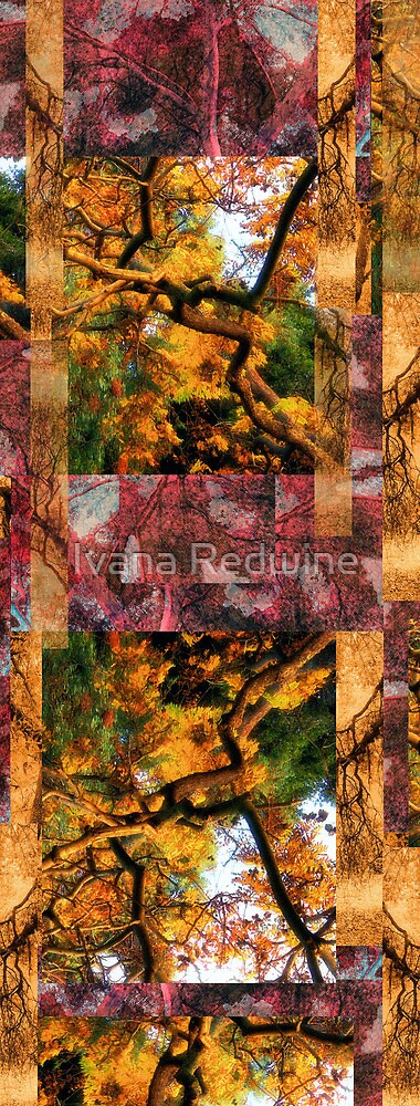 Abstract Composition – Abstracted Trees and Branches by Ivana Redwine