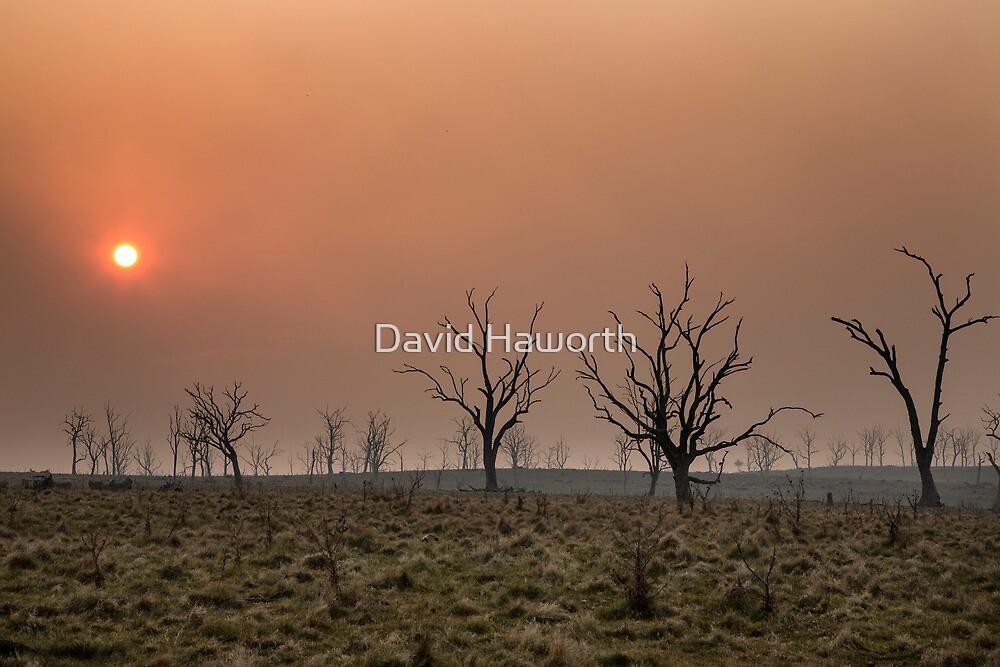 Smokeset by David Haworth