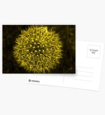 Dandelion Yellow Postcards