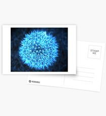 Dandelion Electric Blue Postcards