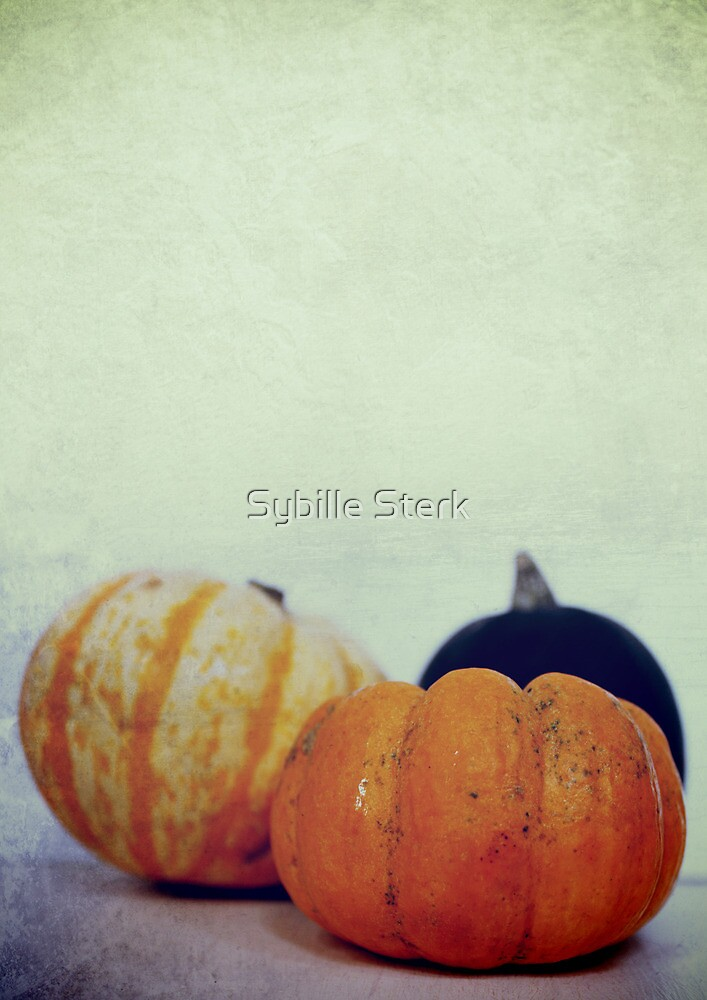 Harvest II by Sybille Sterk