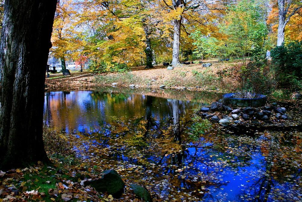 Still Waters by jeremy19