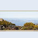 Kunanyi Mount Wellington by Merrilyn Serong